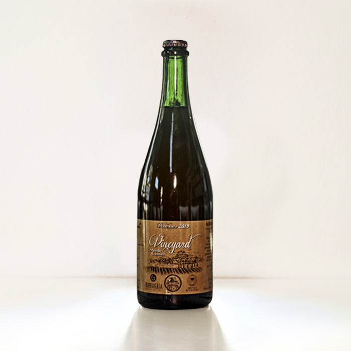 Vineyard Birra Gaia